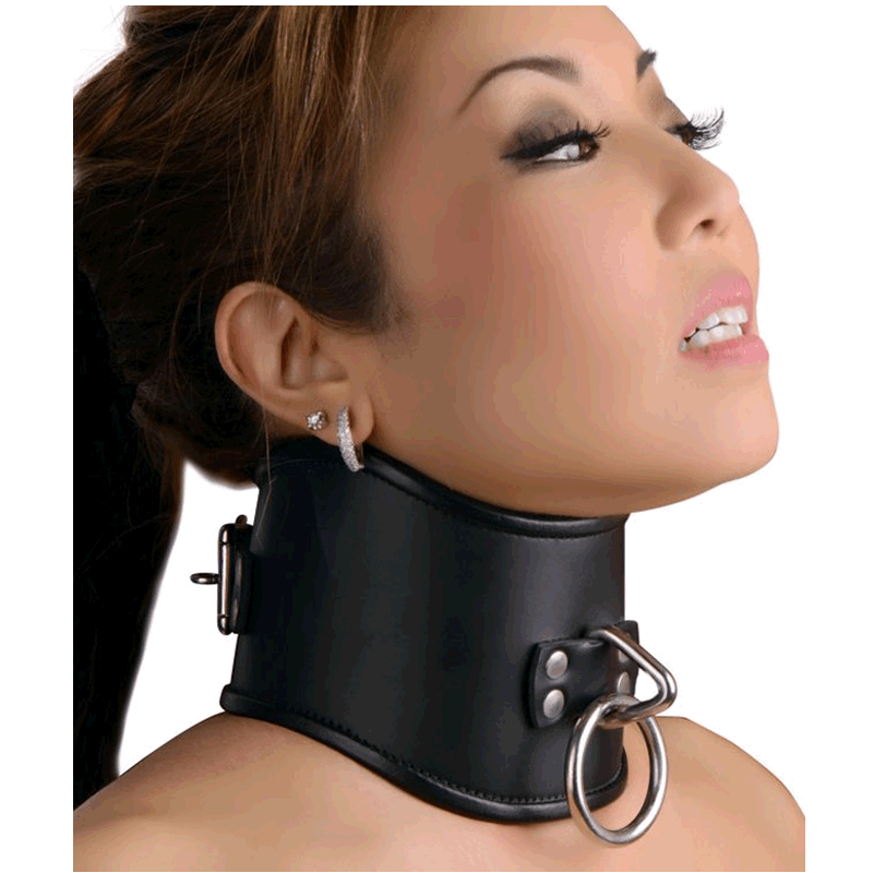 Locking Posture Collar